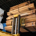 maple lumber for sale