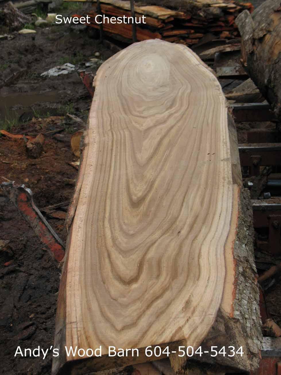sweet chestnur slab