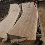 sweet chestnut slabs