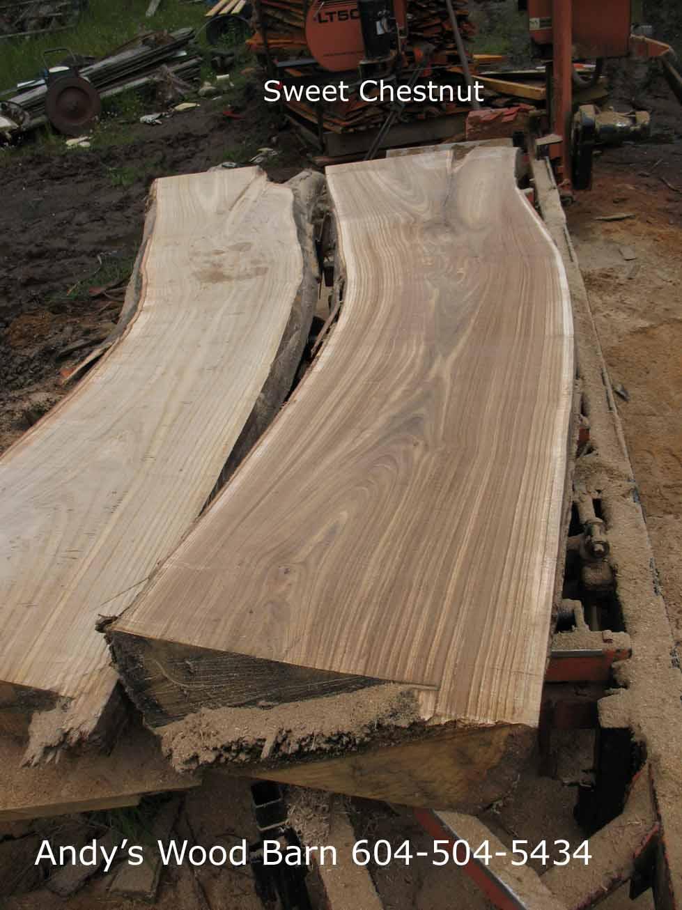 sweet chestnut slabs